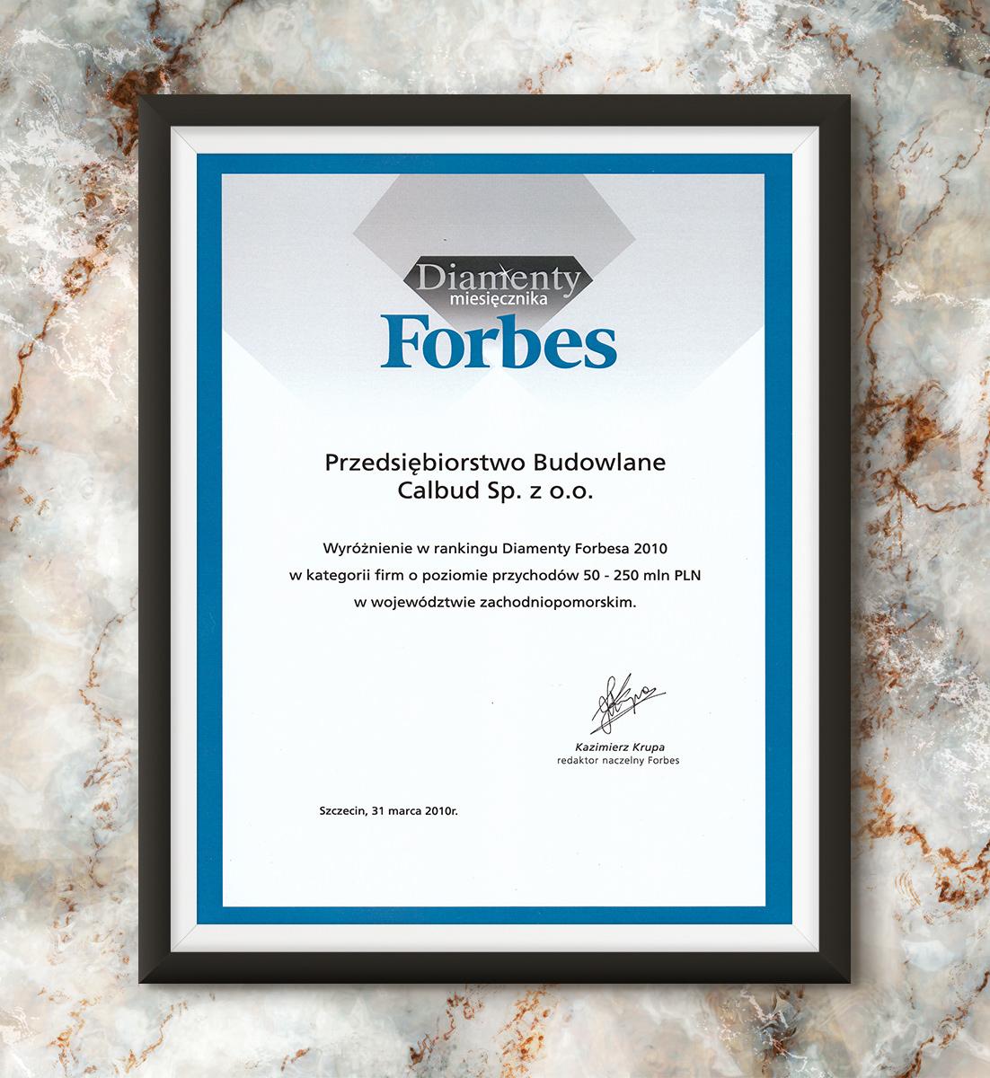 Diamenty Forbesa 2010 - wyróżnienie