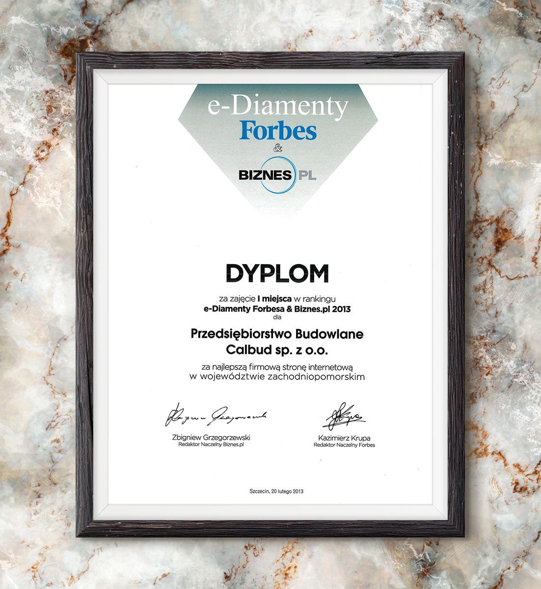 e-Diamenty Forbesa & Biznes.pl 2013 - najlepsza strona internetowa